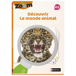 Guide Zoom MS